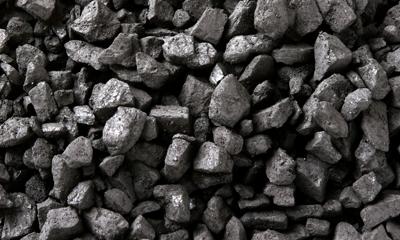 Kömür Çeşitleri